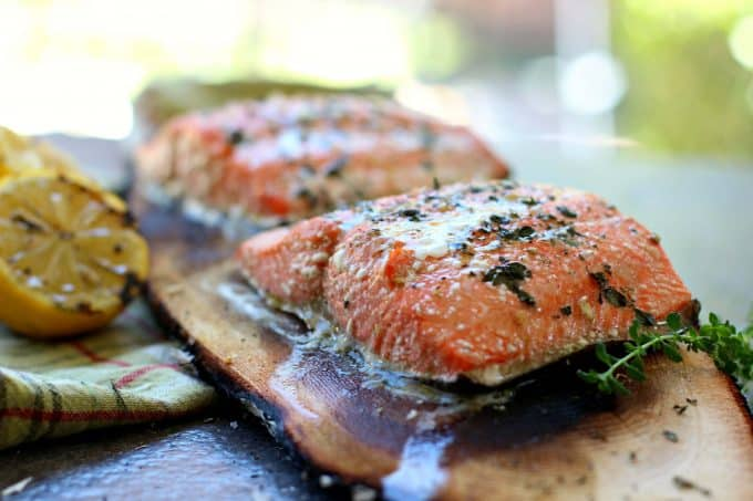 Juicy Alaskan grilled salmon cooked on a cedar plank