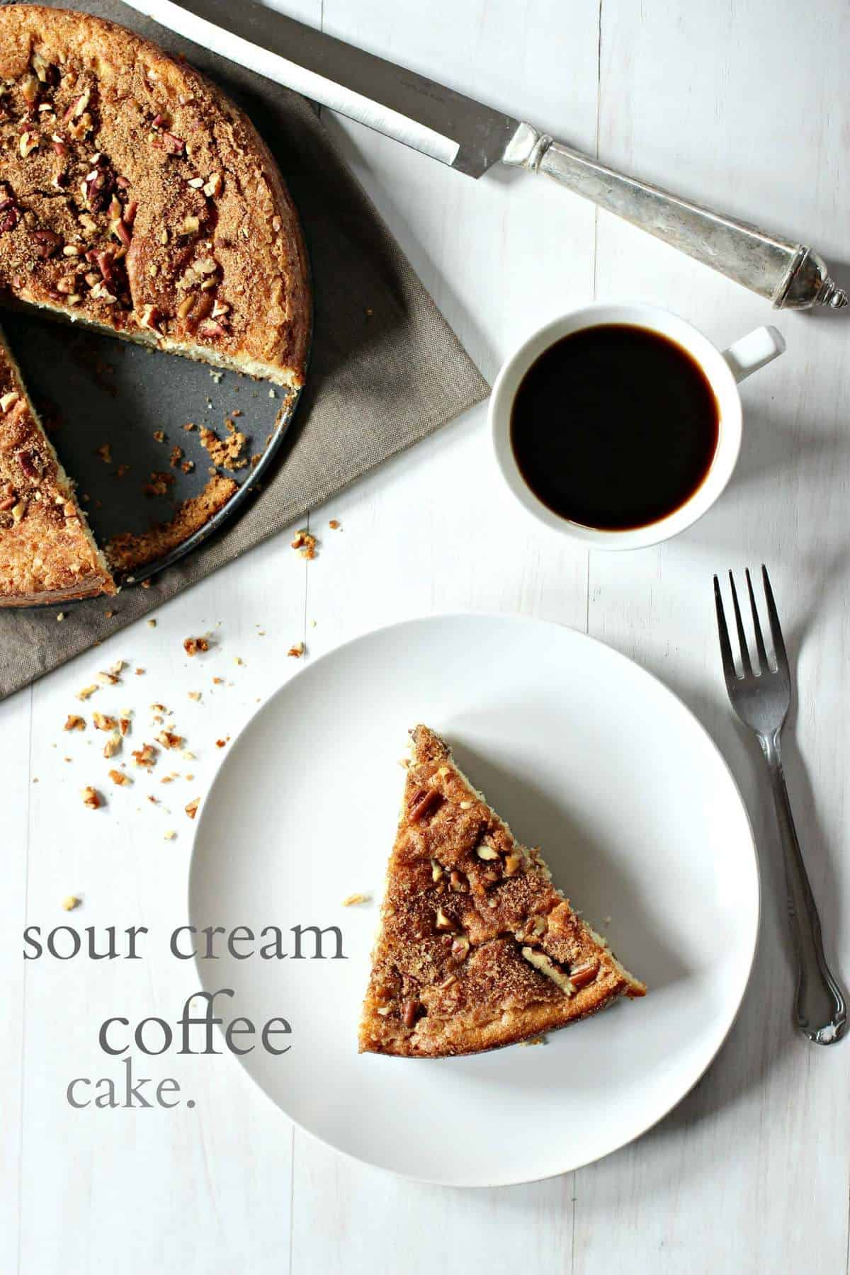Cinnamon Chocolate Sour Cream Coffee Cake