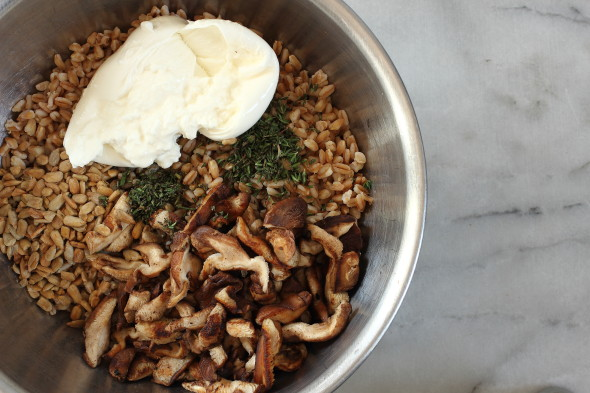 farro and burrata salad