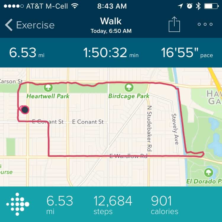 My walk route shown on my Fitbit screen.